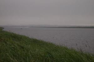 2013061602